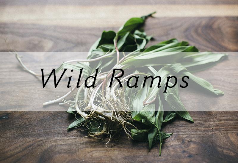 Ramps / Wild Leeks