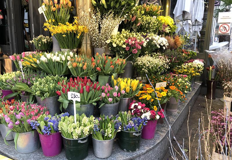 German Retailer Flower Section