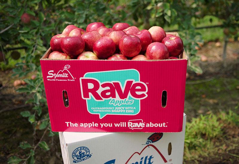 Box of Rave Apples