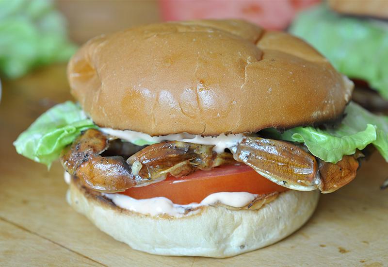 Softshell crab sandwich