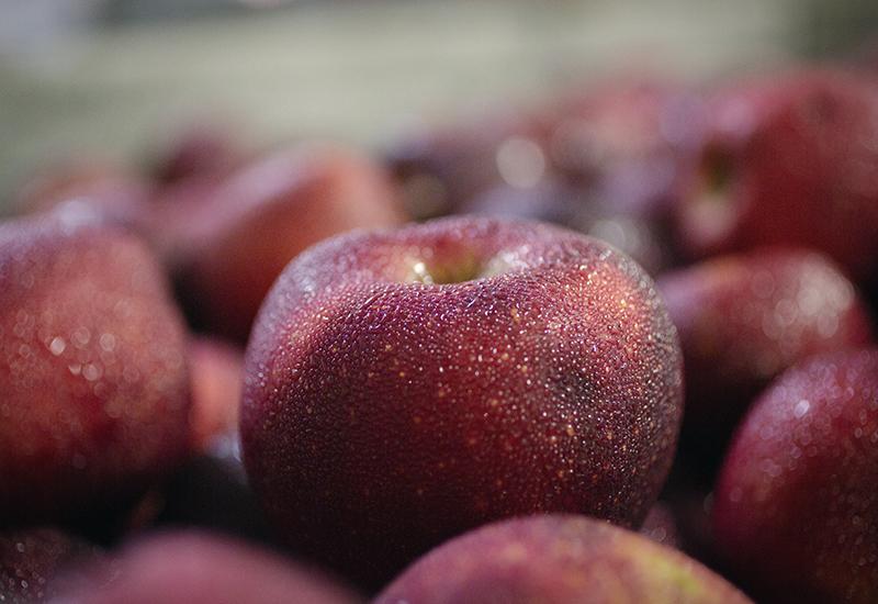Burnham Orchards Apples