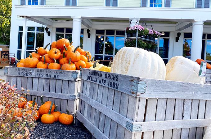 Heinen's Pumpkins