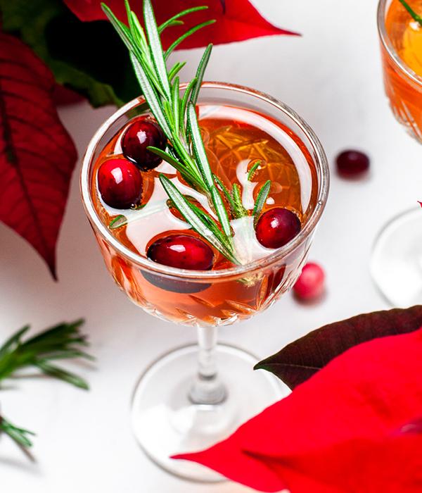 Champagne Cranberry Fizz Cocktail