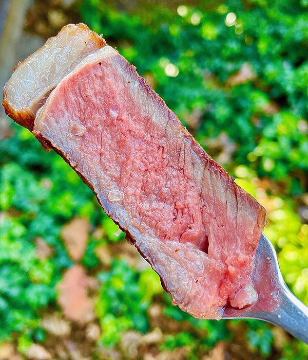 Cooked Steak Internal