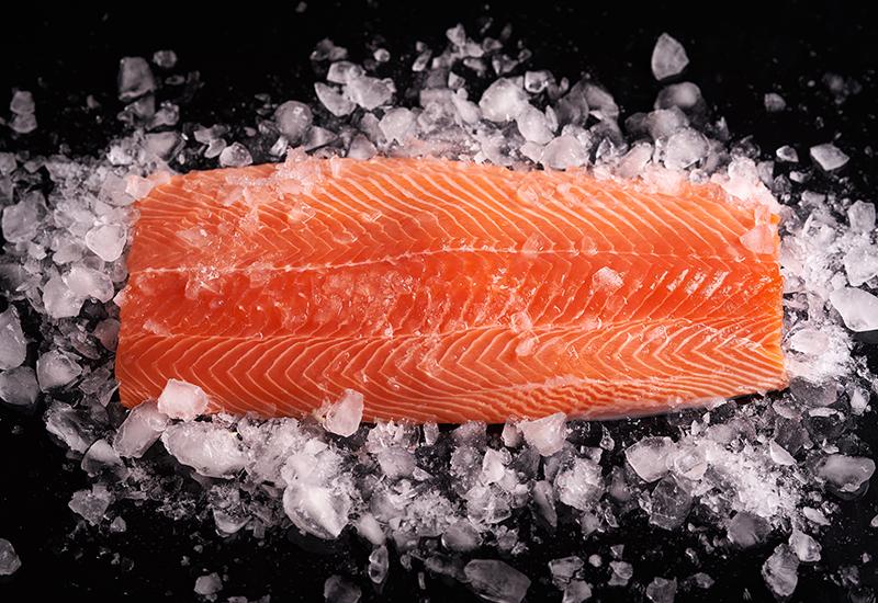 Whole Salmon Fillet on Ice