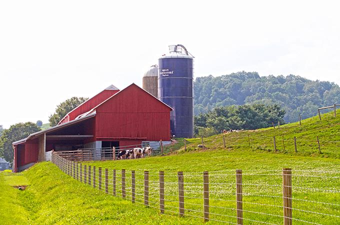 Gerber's Farm and Barn