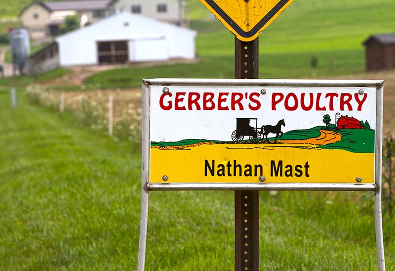 Gerber's Amish Farms Sign