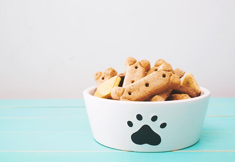 Pet Treats in a Dog Bowl