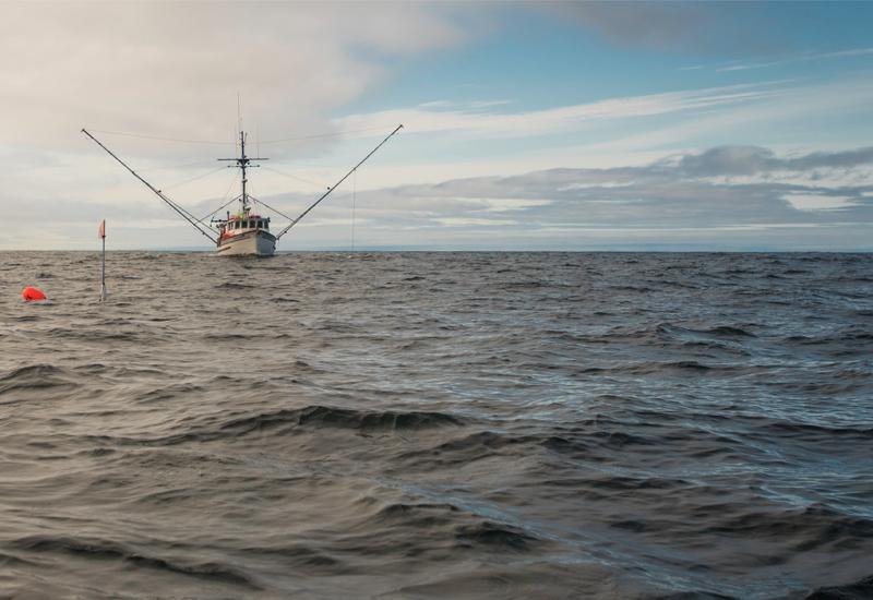 Alaskan Salmon Boat