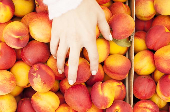 Person Handling Peaches